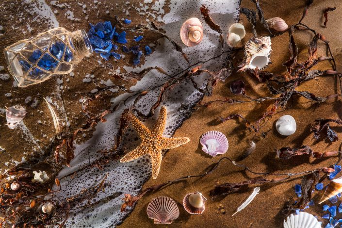 photography-creative-digiman-ocean-starfish-beach-shells-reno-